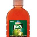 Juicee Crush Apple Blackcurrant (24x250ml)