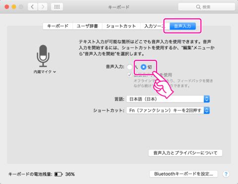 「音声入力」のタブをクリックし、「音声入力」を「切」に