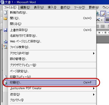 クセロPDF2でPDF変換-1