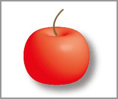 Illustratorの3D機能(回転体)(14)