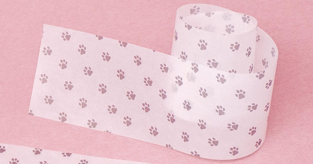 ネコ足柄のグラシン帯紙