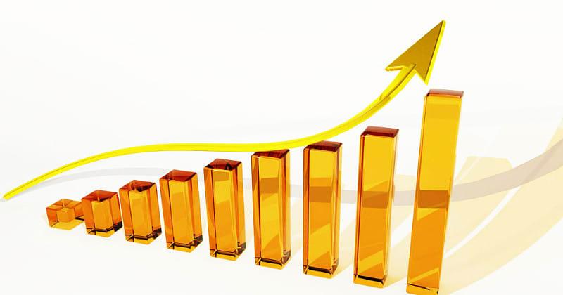 会社の売上アップに、より強力に貢献するカタログの作り方とは?