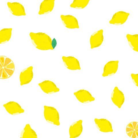 薄紙バラエティセット レモン