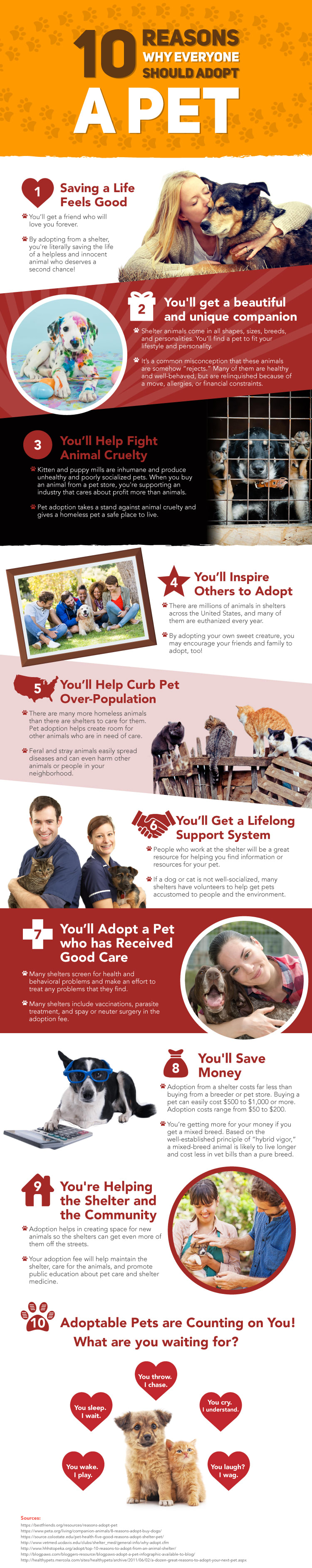 Infographic - Adopt Pets and Save Lives