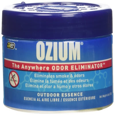 10 Best Car Air Fresheners - Ozium