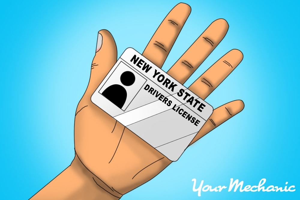 sample new york license