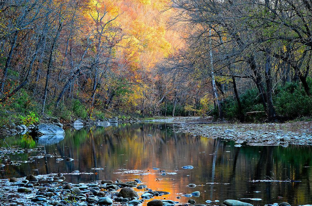 Buffalo Hills Arkansas