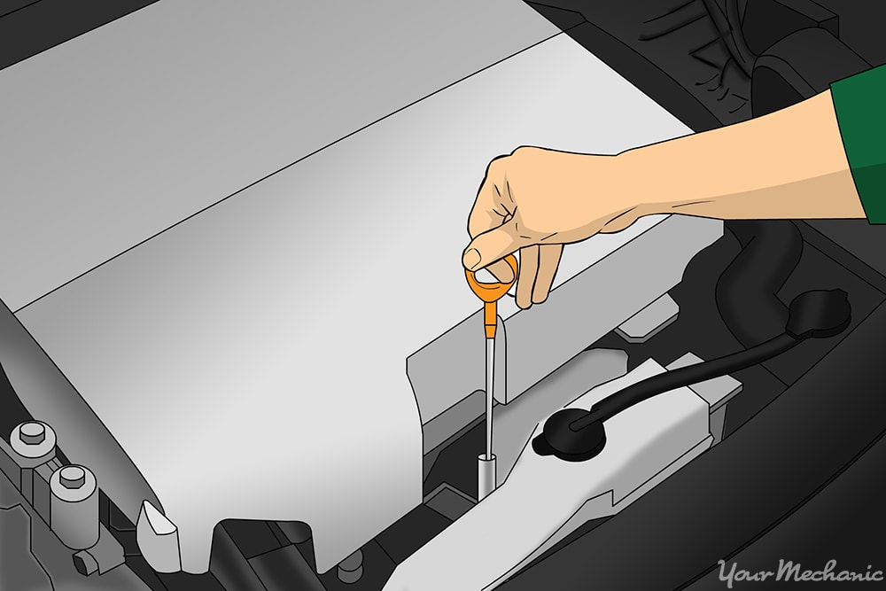 person checking oil fluids