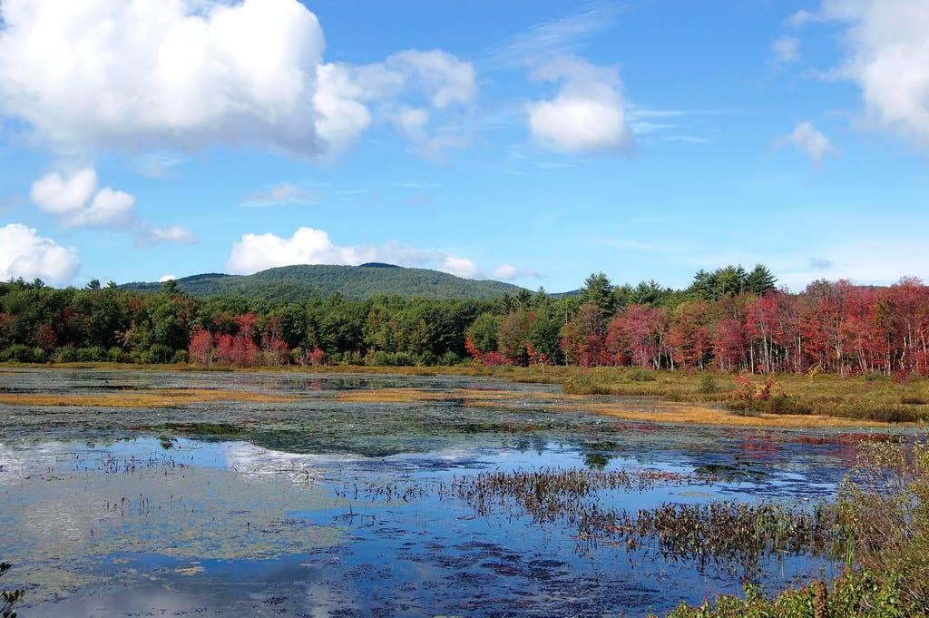 Million Dollar View, Maine