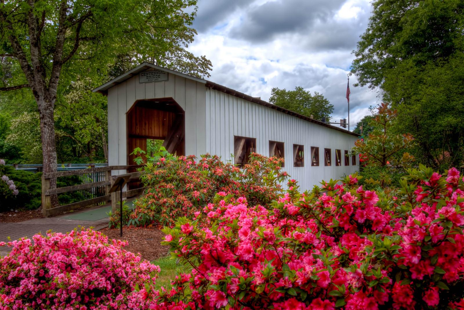 Cottage Grove Covered Bridge Tour Oregon