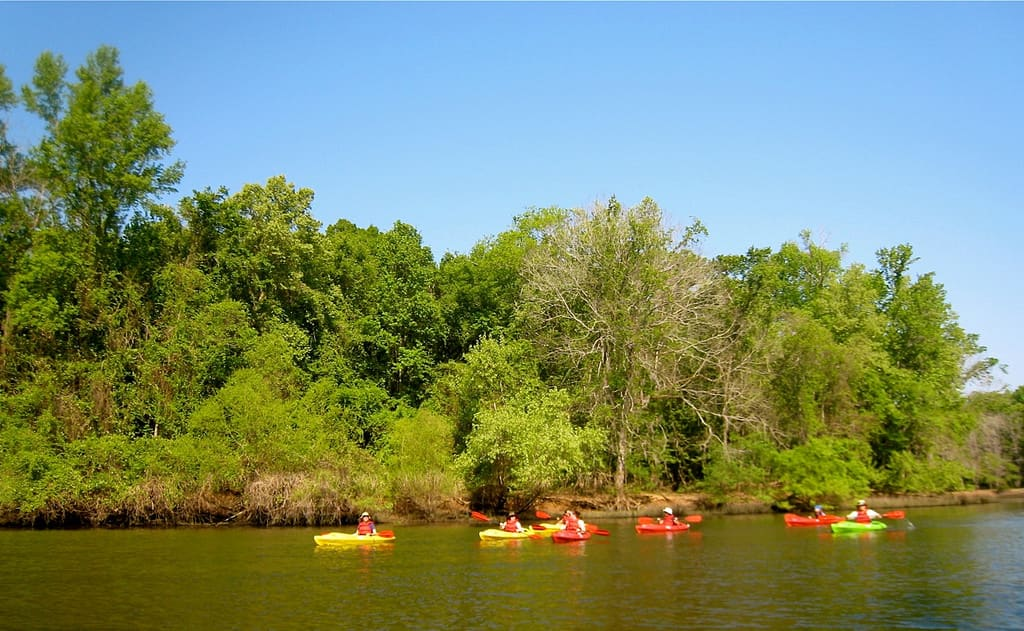 Savannah River National Scenic Byway South Carolina