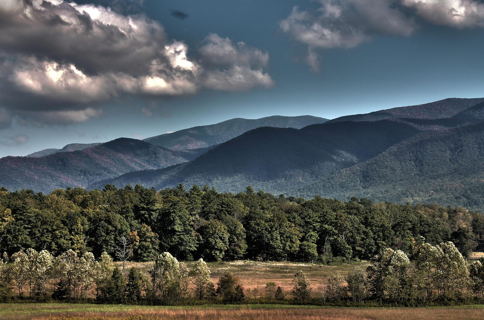 Cades Cove Loop Tennessee