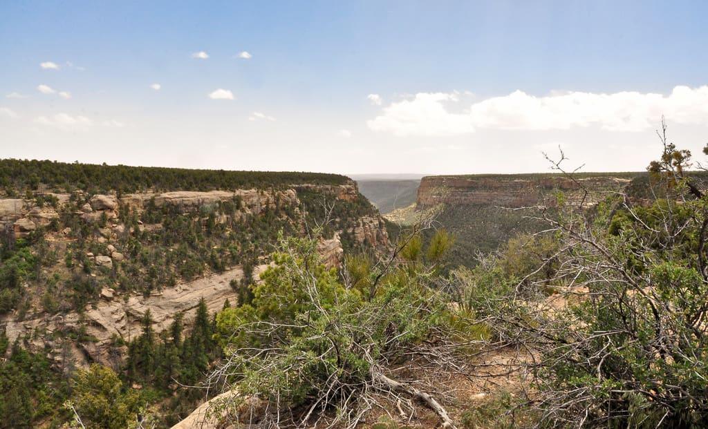 Colorado mesa verde national park