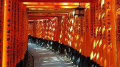 על קודים של אסתטיקה ואוכל בתרבות יפן