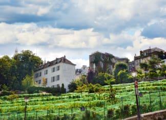 La fête des vendanges de Montmartre revient !
