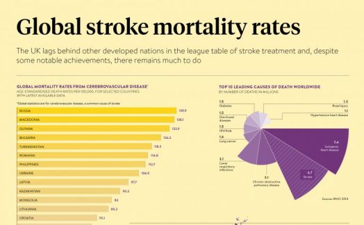 Global stroke mortality rates