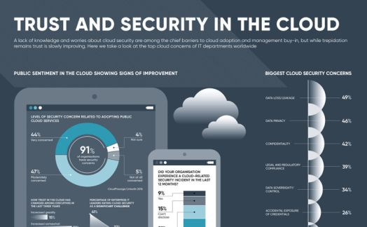 Trust and security in the cloud
