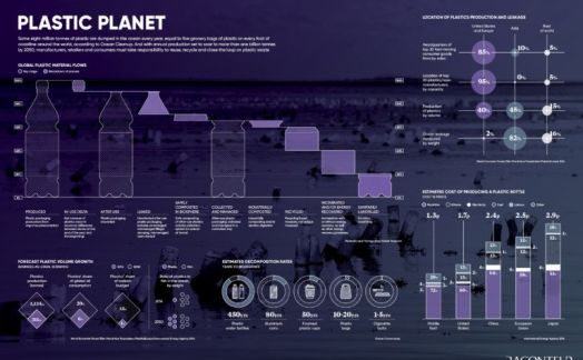 The impact of plastic on the planet
