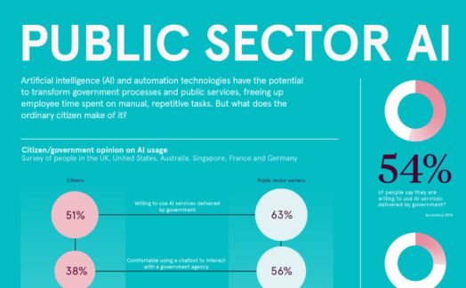 Public Sector AI
