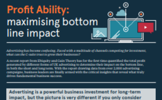 Profit Ability: maximising bottom line impact