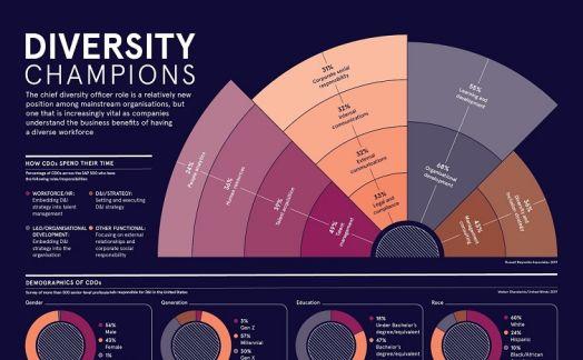 Diversity champions
