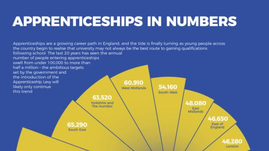 Apprenticeships in numbers infographic