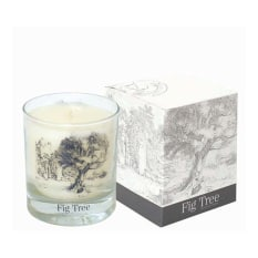 Charisma Czarina Fig Tree Collection Candle, 255g