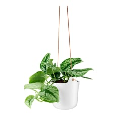 Eva Solo Self-Watering Hanging Pot