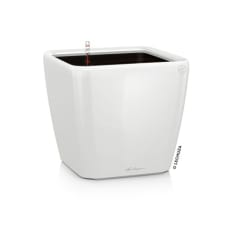 Lechuza Quadro LS 21 Self-Watering Planter