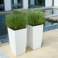 Lechuza Cubico Color 30 Self-Watering Planter