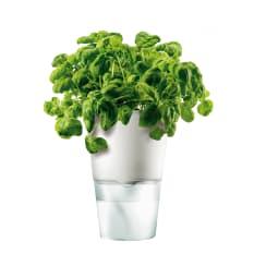 Eva Solo White Self-Watering Flower/Herb Pot