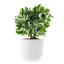 Eva Solo Legio Nova Small Flowerpot, 15.5cm