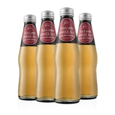 Fitch & Leedes Ginger Ale Bottles, Pack of 4
