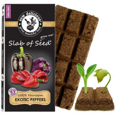 Sow Delicious Exotic Slab of Seed Sweet Peppers