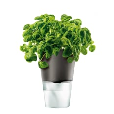 Eva Solo Grey Self-Watering Flower/Herb Pot