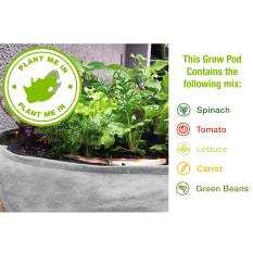 Reel Gardening Grow Pod Vegetable & Herb Growing Kit