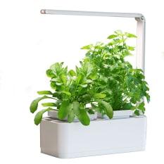 MicroGarden Hydroponic Herb Garden