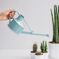 Haws Handy Indoor Watering Can