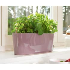 Lechuza Delta 10 Self-Watering Table Planter