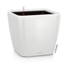Lechuza Quadro LS 28 Self-Watering Planter
