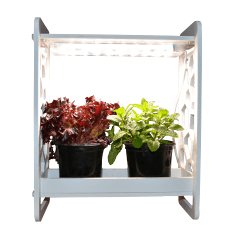 Flourish LED Mini Garden In-home Growing Planter
