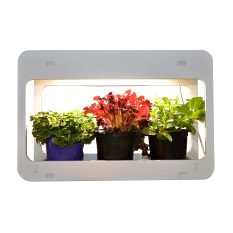 Flourish LED Mini In-Home Herb Growing Garden