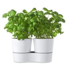 Mepal Self-Watering Twin Herb Pots