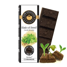 Sow Delicious Pure Collection Slab of Coriander Seed