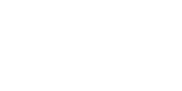 13 Daily Deals logo