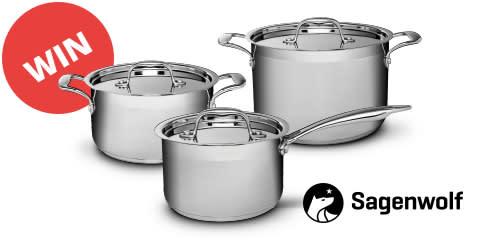 Sagenwolf Silver Series Stainless Steel Cookware Set