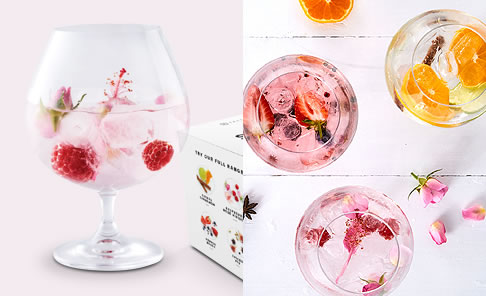 Yuppiechef Top Pick :    Secco Drink Infusions