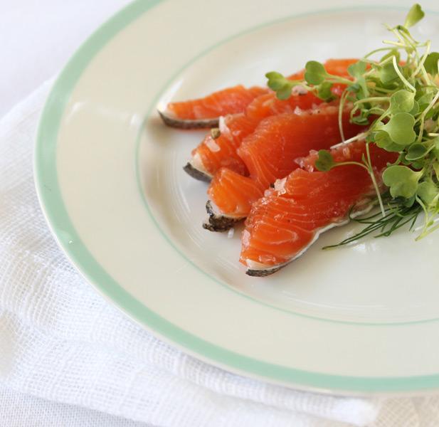 NoMU salt cured trout