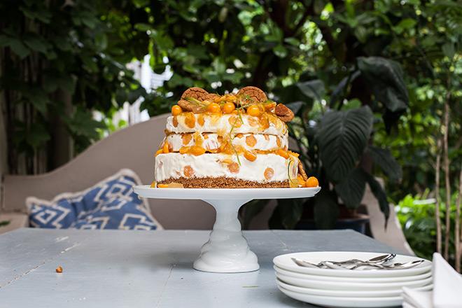 gooseberry-ice-cream-cheesecake