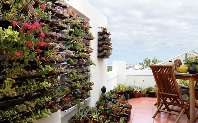 Owngrown Eco Friendly And Sustainable Urban Gardens